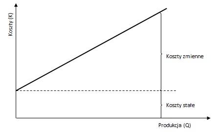 Funkcja kosztów w modelu kosztów zmiennych
