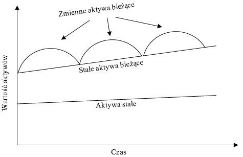 Struktura aktywów przedsiębiorstwa