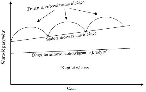 Struktura pasywów przedsiębiorstwa